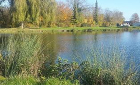 parc-etangs-des-sources-naturalis-masnieres